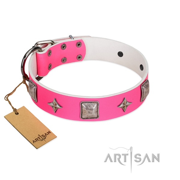 Best quality full grain leather dog collar with adornments for handy use