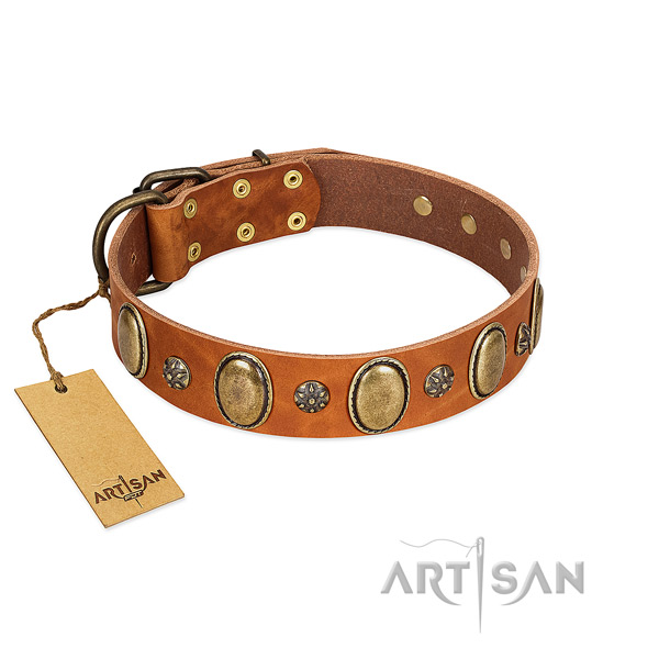 Stylish walking top notch full grain genuine leather dog collar with embellishments