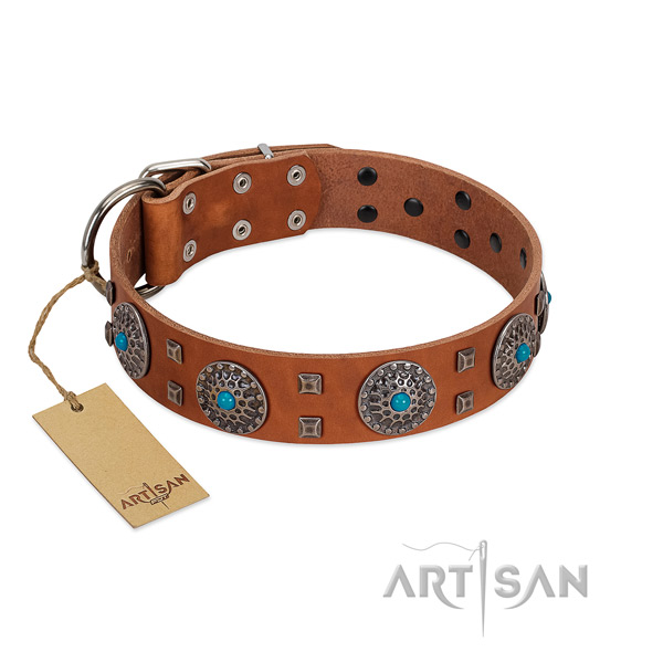Fancy walking natural leather dog collar with incredible embellishments