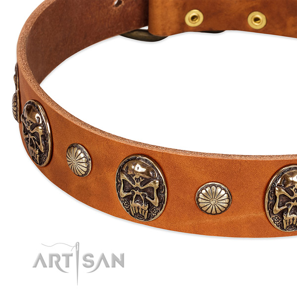 Reliable hardware on natural genuine leather dog collar for your pet