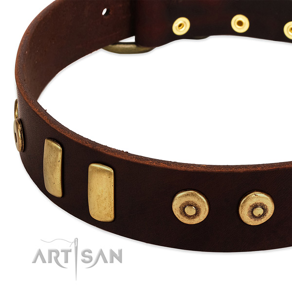 Durable full grain genuine leather collar with significant adornments for your dog