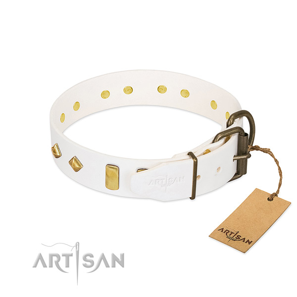 Quality full grain natural leather dog collar with rust-proof fittings
