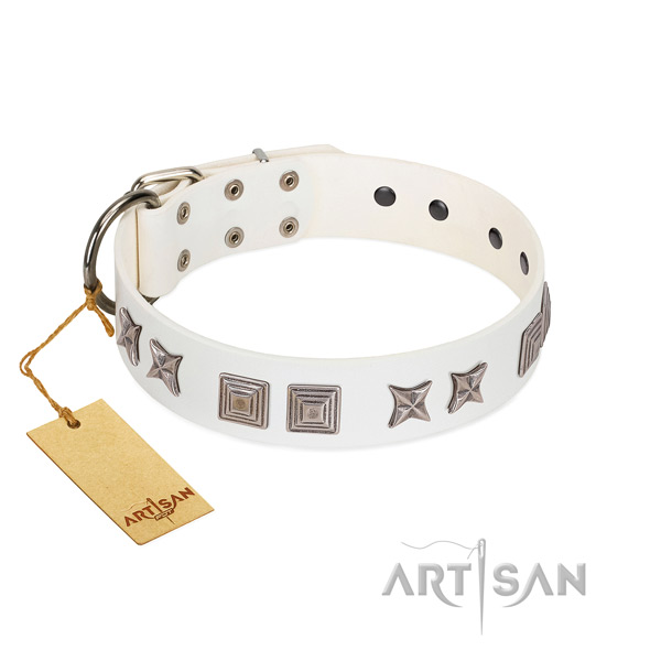 Natural leather dog collar with stylish design decorations made four-legged friend