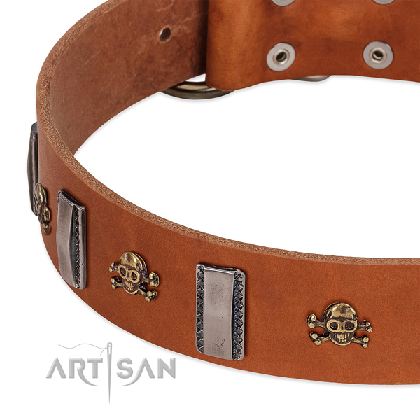 Inimitable dog collar of full grain leather with embellishments
