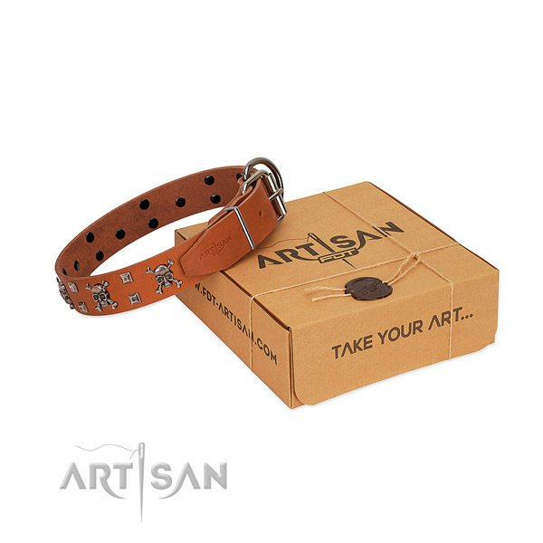 Durable natural leather dog collar with corrosion resistant traditional buckle