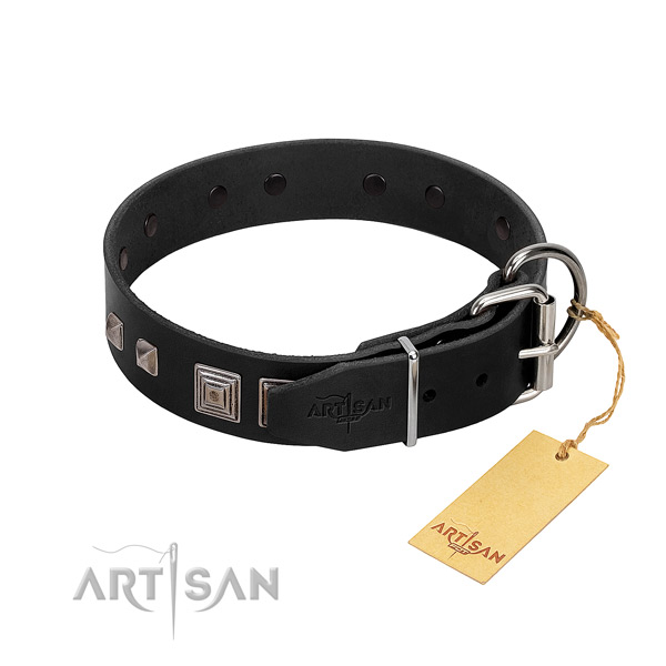 Easy wearing full grain natural leather dog collar with exceptional adornments