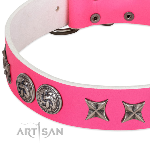 Genuine leather collar with remarkable adornments for your pet