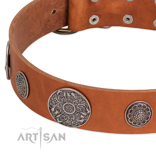 Rust-proof hardware on full grain leather dog collar