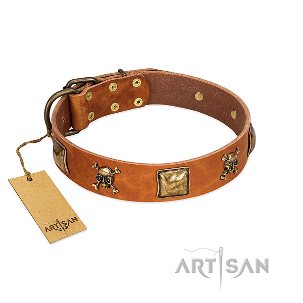 Amazing full grain leather dog collar with rust resistant decorations