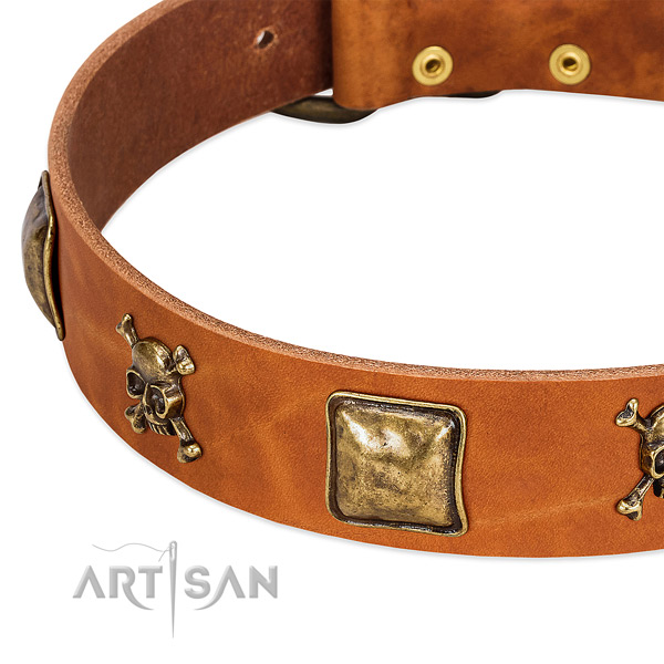 Unique embellishments on leather collar for your dog