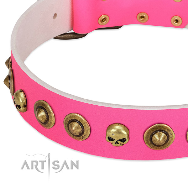 Remarkable adornments on full grain natural leather collar for your pet