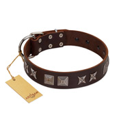 """Needle Stories"" Modern FDT Artisan Brown Leather German Shepherd Collar with Square Engraved Plates and Four-Point Stars"