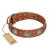 """Far Star"" FDT Artisan Tan Leather German Shepherd Collar with Engraved Studs"