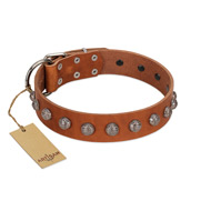 """Heroic Deeds"" Designer Handmade FDT Artisan Tan Leather German Shepherd Collar"