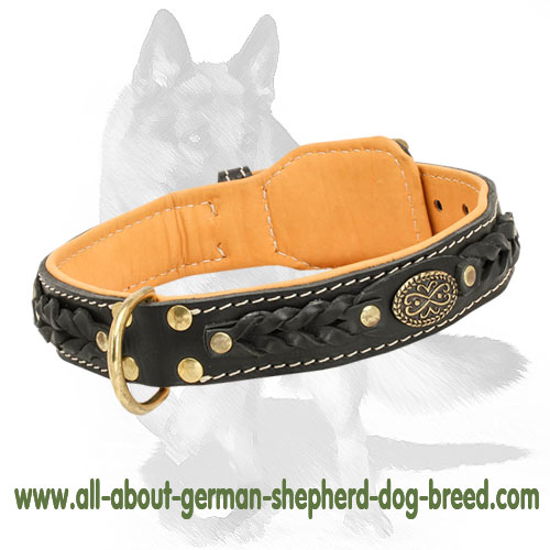 Walking leather non-rusting collar