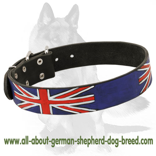 British style leather dog collar