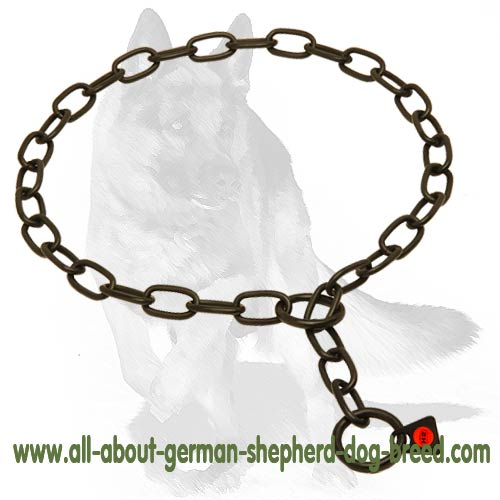 Choke chain dog collar with polished links