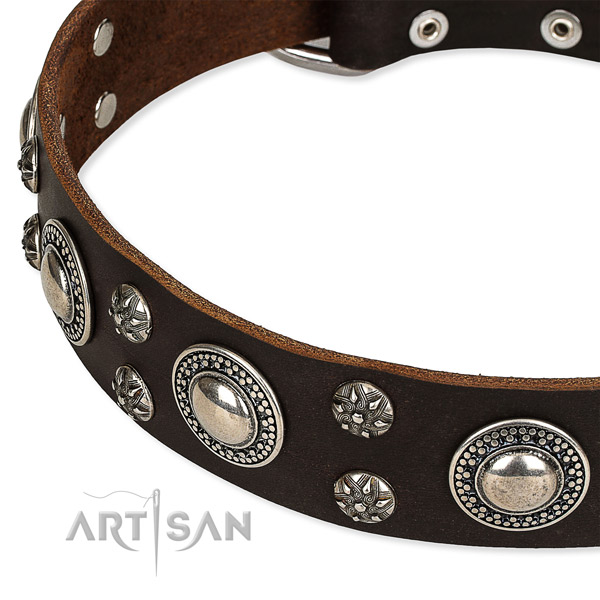 Snugly fitted leather dog collar with resistant durable fittings
