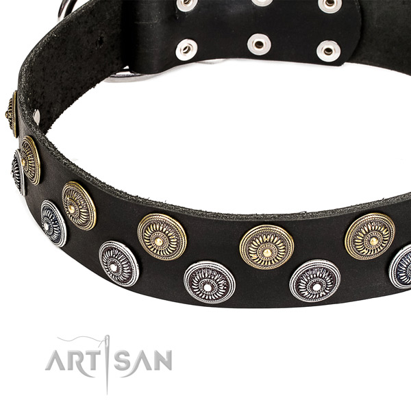 Easy to use leather dog collar with almost unbreakable rust-proof fittings
