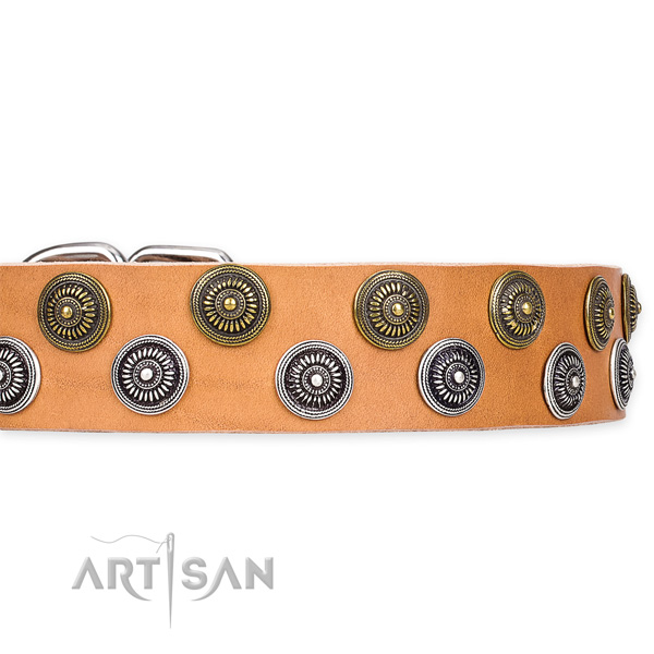 Quick to fasten leather dog collar with extra strong durable fittings