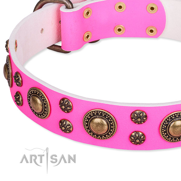 Adjustable leather dog collar with resistant to tear and wear brass plated hardware