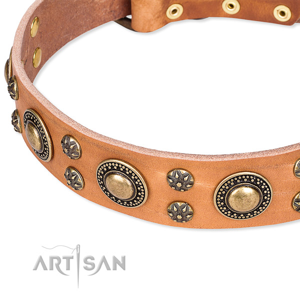 Easy to put on/off leather dog collar with resistant to tear and wear rust-proof fittings