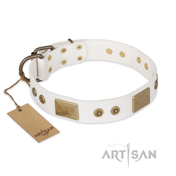 Top notch design embellishments on genuine leather dog collar