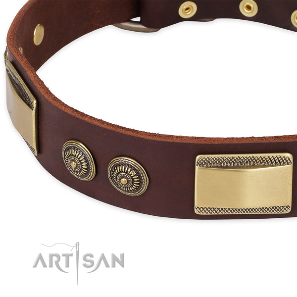 Daily use full grain genuine leather collar with rust-proof buckle and D-ring