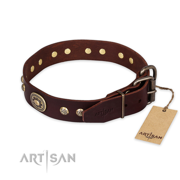 Daily use leather collar with studs for your canine