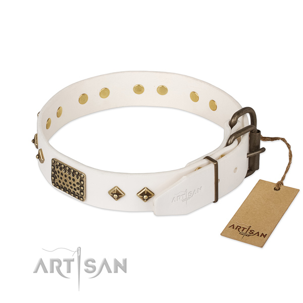 Walking full grain leather collar with studs for your four-legged friend