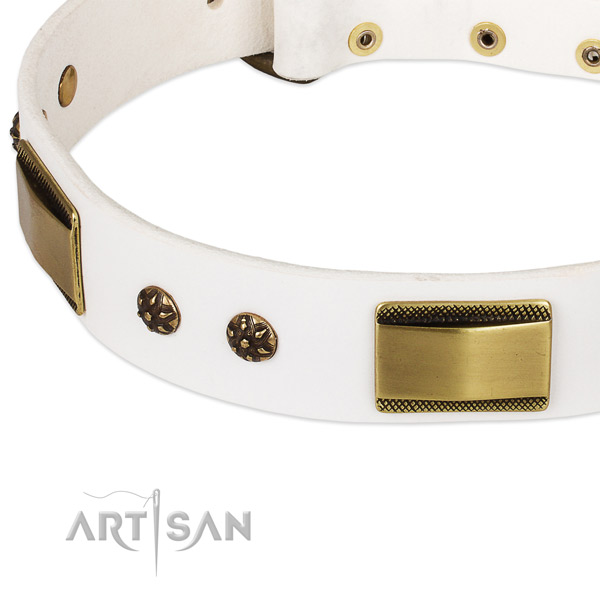 Everyday use genuine leather collar with durable buckle and D-ring