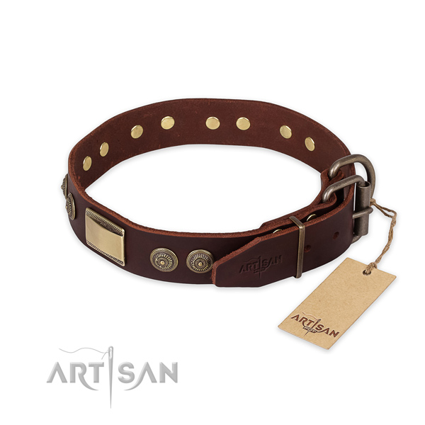 Everyday use genuine leather collar with studs for your doggie