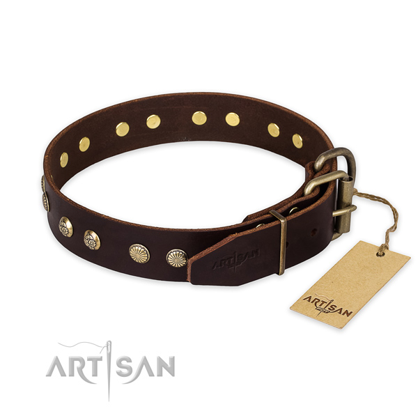 Daily walking full grain natural leather collar with adornments for your dog