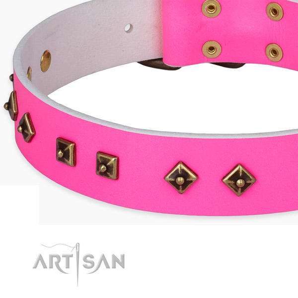 Stylish walking leather collar with reliable buckle and D-ring
