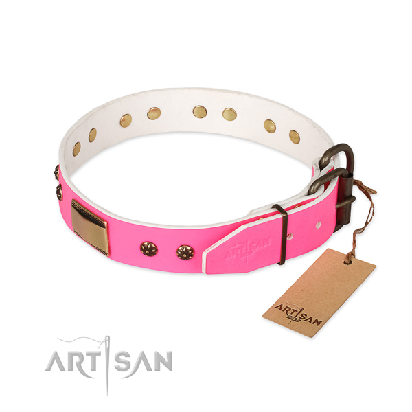 Daily walking full grain leather collar with adornments for your dog