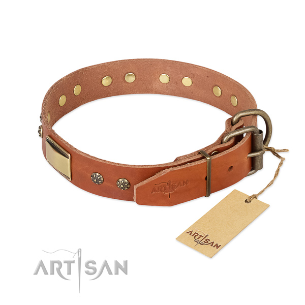 Walking full grain leather collar with studs for your pet