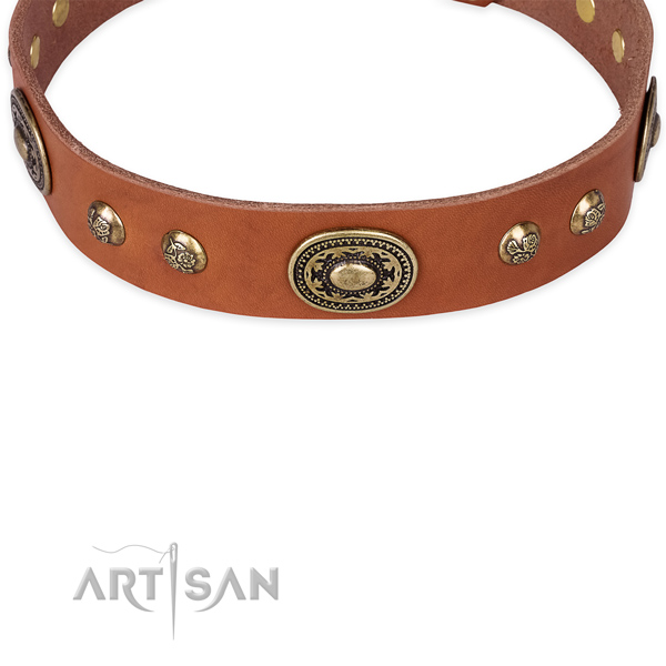 Daily walking full grain leather collar with rust resistant buckle and D-ring