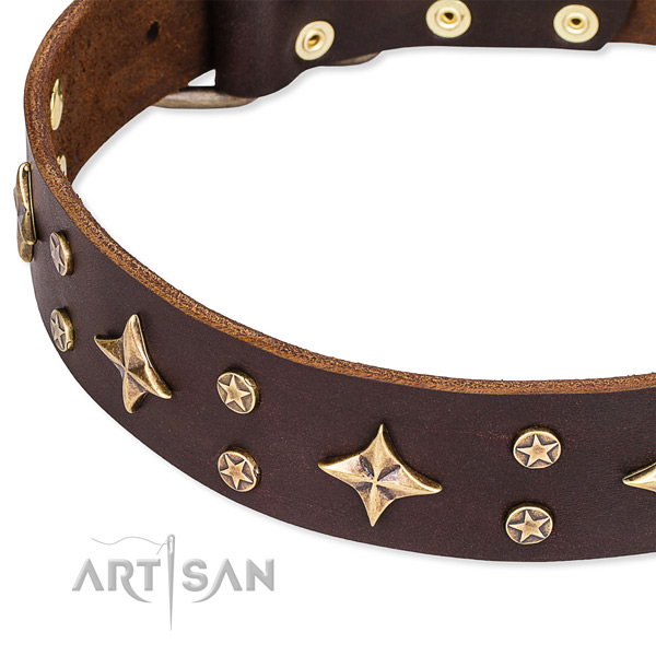 Easy to adjust leather dog collar with extra strong rust-proof hardware