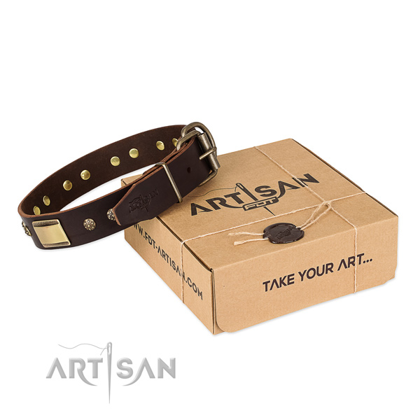 Trendy full grain genuine leather dog collar for walking in style