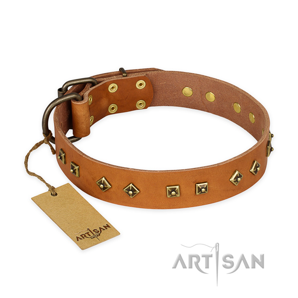 Impressive design studs on full grain genuine leather dog collar