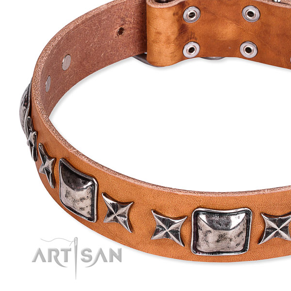 Quick to fasten leather dog collar with extra sturdy rust-proof fittings