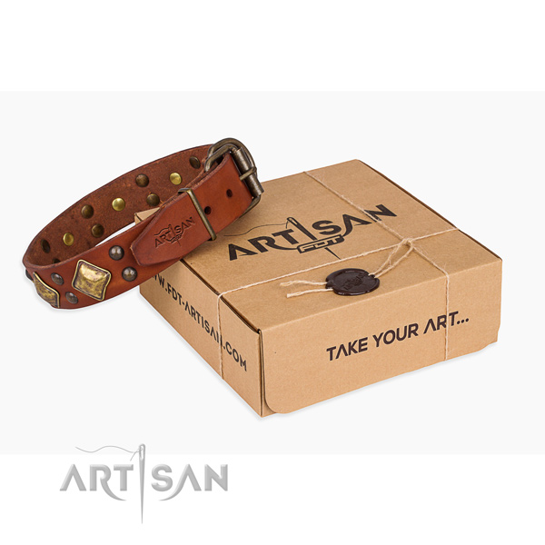 Finest quality genuine leather dog collar for walking in style