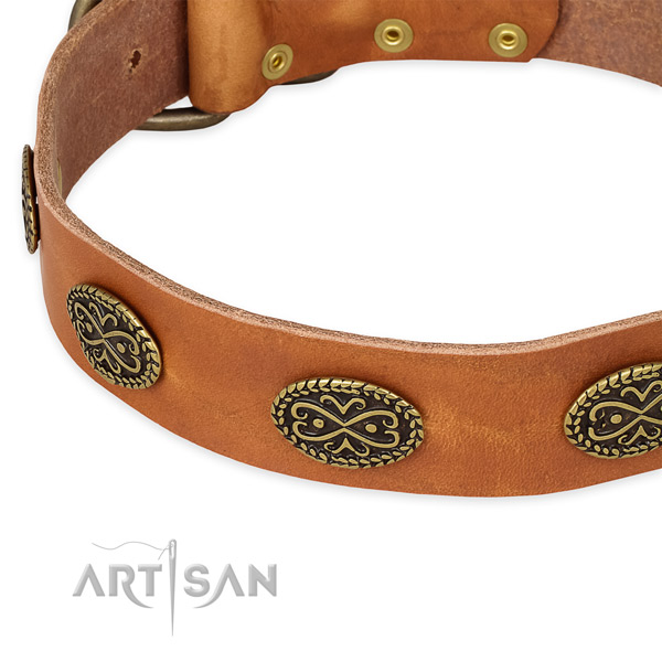 Easy to put on/off leather dog collar with resistant durable fittings