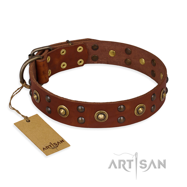Impressive design embellishments on full grain genuine leather dog collar
