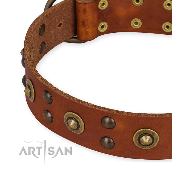 Quick to fasten leather dog collar with extra strong rust-proof set of hardware