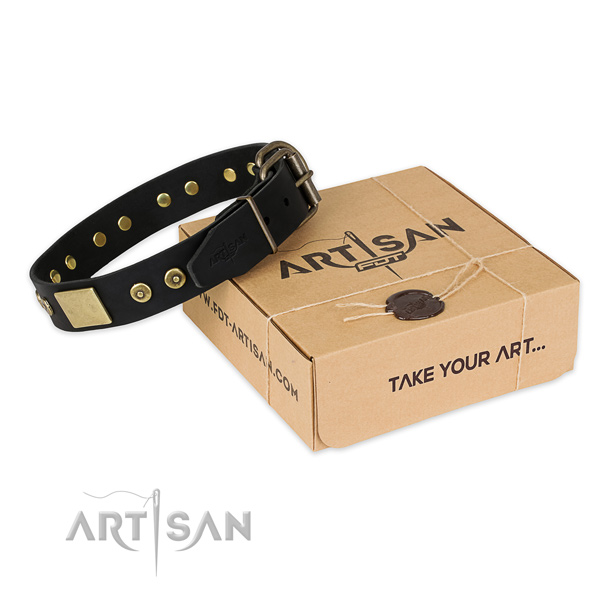 Stylish design leather dog collar for daily walking