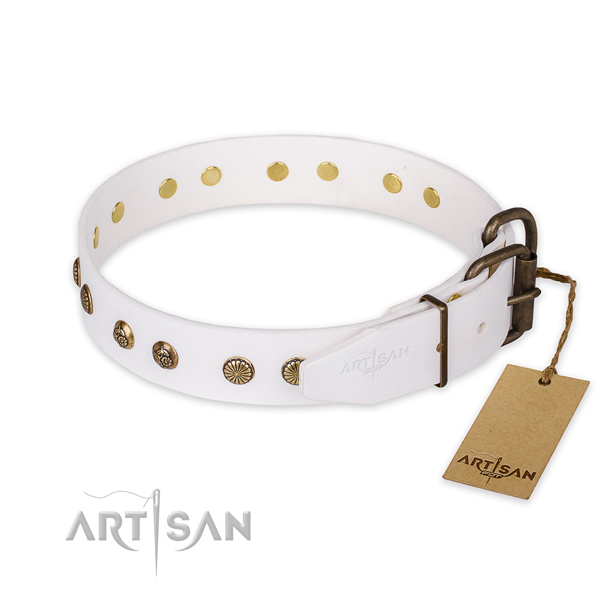 Fashionable design studs on leather dog collar