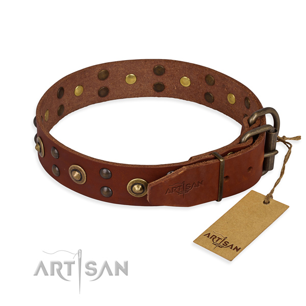 Daily walking full grain natural leather collar with decorations for your doggie