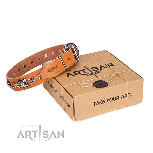 High quality full grain leather dog collar for stylish walks