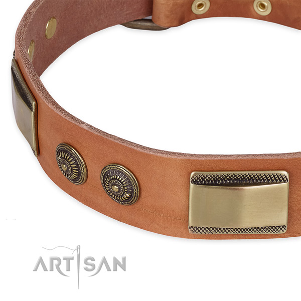 Everyday walking full grain leather collar with durable buckle and D-ring